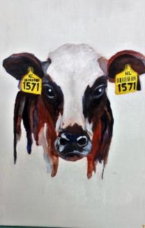 Dittie Nouwens_Koe_acryl op canvasboard_30x30
